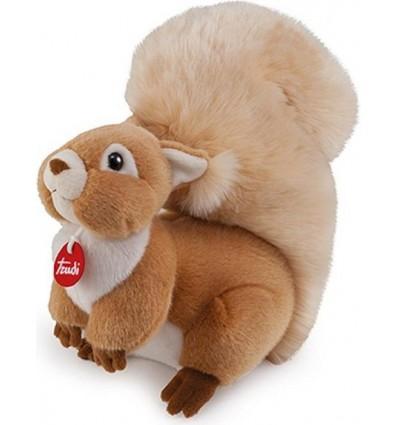 Eichhörnchen Ginger