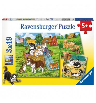 Puzzle Süsse Katzen u. Hunde